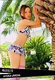 【トレーディングカード】《AKB48 トレーディングコレクション Part2》 梅田彩佳 箔押しキラカード akb482-r102 トレカ