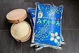 【新米】みずかがみ 環境こだわり米 10kg【平成28年・滋賀県産】 (白米10kg×1袋)