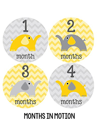 Months in Motion 028 Monthly Baby Stickers Gender Neutral Elephants Months 1-12