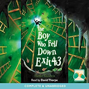 The Boy Who Fell Down Exit 43 Audiobook