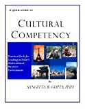img - for A Quick Guide to Cultural Competency book / textbook / text book