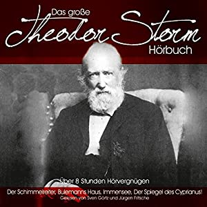 Das große Theodor-Storm-Hörbuch Hörbuch