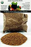 Organic Alfalfa Sprouting Seed- 1/2 Lbs (8 Oz.) - Organic - High Sprout Germination- Edible Seeds, Gardening, Hydroponics, Growing Salad Sprouts, Planting, Food Storage &amp; More