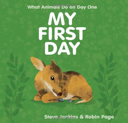 My First Day: What Animals do on Day One