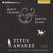 Titus Awakes: Gormenghast, Volume 4 (The Lost Book of Gormenghast) | [Maeve Gilmore, Mervyn Peake]