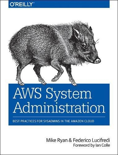 AWS System Administration: Best Practices for Sysadmins in the Amazon Cloud [Ryan, Mike - Lucifredi, Federico] (Tapa Blanda)