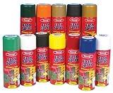 Tetrosyl EAW406 All Purpose Spray Paint - Appliance White