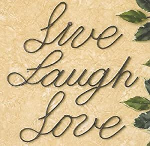 Amazon.com: Live Laugh Love Words Hanging Wall Decor Set of 3 ...