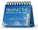 Praying the Prayers of the Bible Perpetual Calendar - Page a Day: Daily Prayers from Gods Word