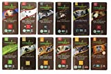Endangered Species Chocolate Variety Pack 12 Flavors (Pack of 12) -------------(Dark Chocolate with Cinnamon Cayenne, Dark Chocolate with Sea Salt & Almonds, Dark Chocolate with Cherry, Tiger Dark Espresso Beans, Rain Forest Dark Mint, Grizzly Dark Raspberry, Wolf Dark Cranberry Almond, Sea Otter Milk Chocolate, Chimpanzee Dark Chocolate, Hazelnut Toffee, Panther Extreme Dark Chocolate, Artic Fox with Pumpkin Spice)