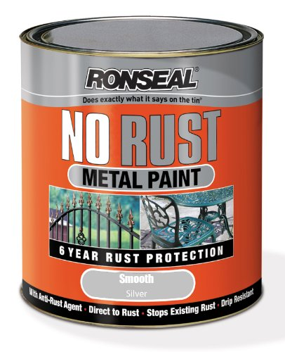 Ronseal NRSMSI250 250ml No Rust Metal Paint - Smooth Silver