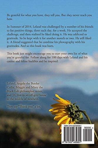100 Days of Gratitude