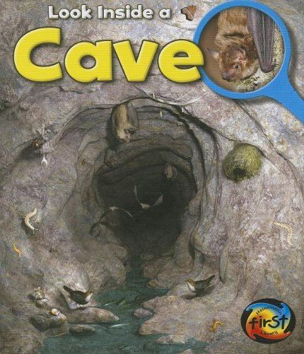 Cave: Look Inside (Heinemann First Library)