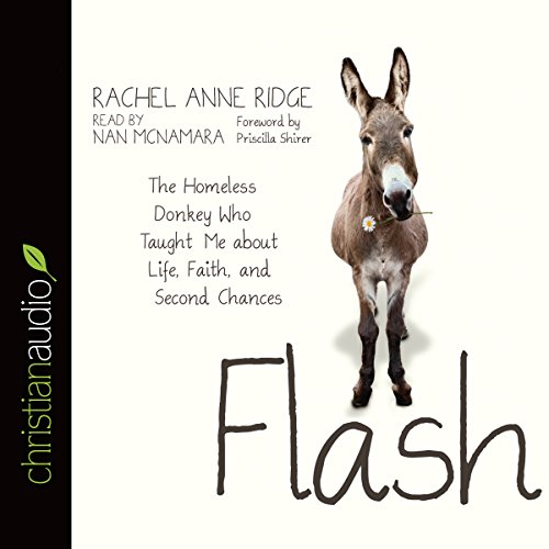 Download Flash: The Homeless Donkey Who Taught Me about Life, Faith, and Second Chances