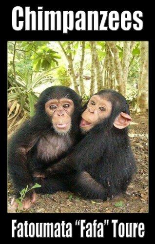 Chimpanzees PDF