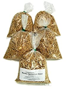 Organic Barley Seeds - 4.5 Lbs in Pre-Measured Bags for 10x20 Trays - Whole (Hull Intact) Barleygrass Seed - Ornamental Barley Grass, Juicing
