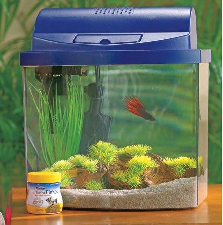 Aqueon 17775 Mini Bow 5 Desktop Aquarium Kit, Blue