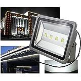 Hengda® LED 200W Kaltweiß Super Hell Fluter Aussen Wasserdicht Spot Licht 230V Grau Außenstrahler Flutlicht Gartenleuchte...