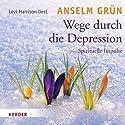 Wege durch die Depression Hörbuch von Anselm Grün Gesprochen von: Levi Harrison