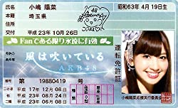 AKB48免許証 風は吹いている【小嶋陽菜】