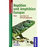 Reptilien und Amphibien Europas