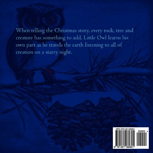 Little Owl at Christmas