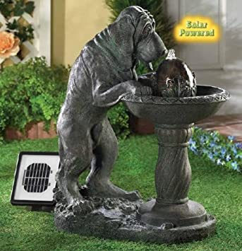 Amazon.com : Solar Dog Pet Hound Statue Bird Bath Outdoor Patio ...