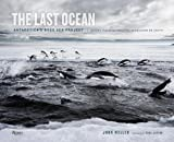 img - for The Last Ocean: Antarctica's Ross Sea Project: Saving the Most Pristine Ecosystem on Earth book / textbook / text book