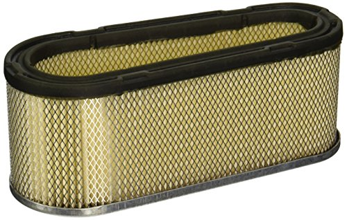 Maxpower 334316 Briggs and Stratton 493909 Air Filter with Prefitt