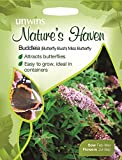 Unwins Pictorial Packet - Natures Heaven Butterfly Bush (Buddleia) Miss Butterfly - 200 Seeds