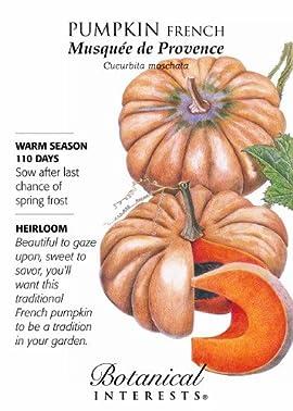 Musquee de Provence French Pumpkin Seeds - 2 grams