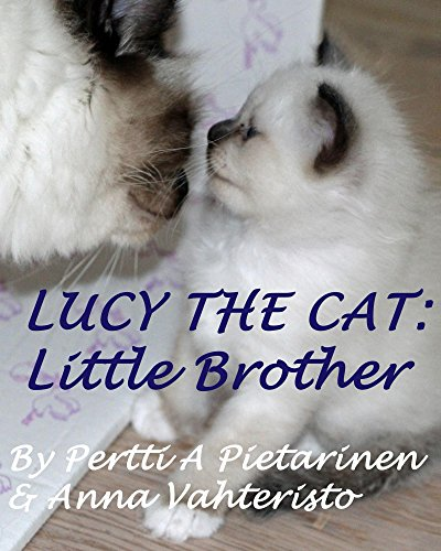 Lucy The Cat: Little Brother