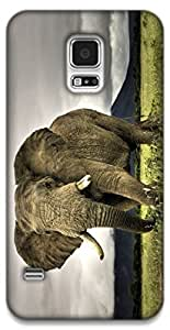 The Racoon Lean Elephant hard plastic printed back case / cover for Samsung Galaxy S5