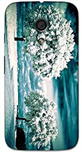 Timpax protective Armor Hard Bumper Back Case Cover. Multicolor printed on 3 Dimensional case with latest & finest graphic design art. Compatible with Motorola Moto -G-2 (2nd Gen )Design No : TDZ-27790