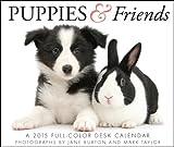 Puppies & Friends Desk 2015 Calendar