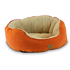 Precision Pet SnooZZy Mod Chic Daydreamer Bed, 21 by 19 by 9.5-Inch, Buff Yellow