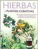 Hierbas y plantas curativas