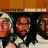 Bridging the Gap ~ The Black Eyed Peas
