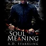 Soul Meaning: Seventeen, Book One | AD Starrling