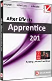 Class on Demand After Effects Apprentice 201 Online Streaming Educational Training Tutorial with Chris and Trish Meyer
