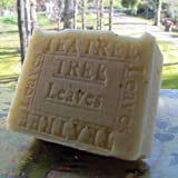Australian Tea Tree with Cocoa Butter and Tree Leaves (Face and Body Soap) ~ Natural Handcrafted...