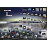 "American Educational Patterns in Nature Math Science Art Poster, 38-1/2"" Length x 27"" Width"