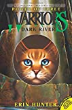 Dark River (Warriors: Power of Three, No. 2)