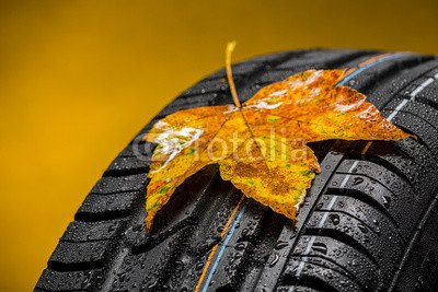 alu-dibond-bild-120-x-80-cm-canadian-car-car-tires-with-autumn-leaf-bild-auf-alu-dibond