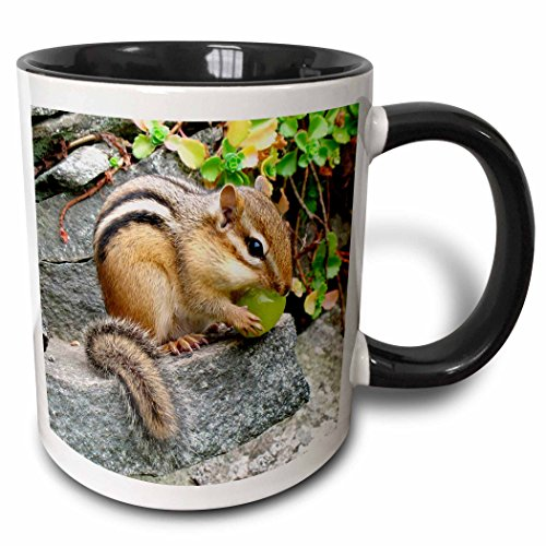 3dRose mug_3109_4 Chipmunk Two Tone Black Mug, 11 oz, Black/White