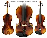 Vienna Strings Munich 4/4 Violin (Bow and Case Included)