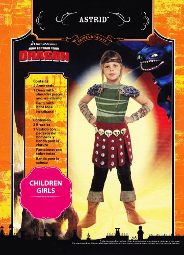 how to train your dragon astrid halloween costume