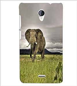 PRINTSWAG ELEPHANT Designer Back Cover Case for MICROMAX A106 UNITE 2