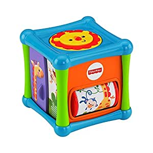 Fisher Price Fisher Price Growing Baby Animal Activity Cube, Multi Color