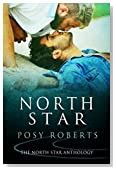 North Star (Dreamspinner Press Bundles)